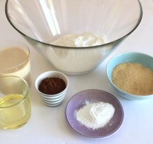 ingredienti_vegana_cioccolato